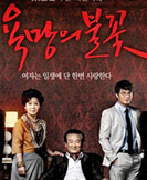 Flame of Desire korean drama