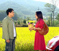 jujube-tree korean drama